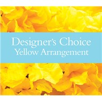designers_choice_yellow